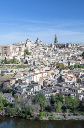 View of the Spanish city of Toledo in vertical, seen from the river to the Gothic cathedral of Santa Maria, surronded by houses Stock Photo - 13801368