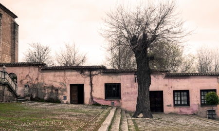 Facade of old houses in a park Stock Photo - 14008335