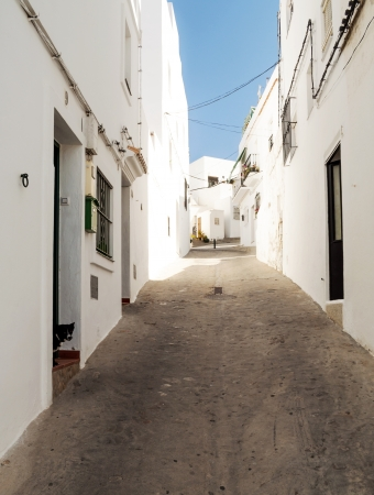 Close street decorated with white houses and bars in their windows  It is a narrow, sloping street  A dog seen in one door  It is Situated in a village in Spain Called Vejer de la Frontera photo