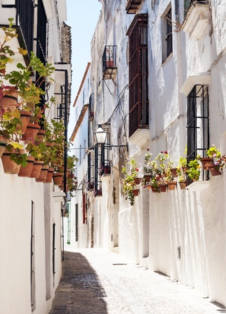 sloping: Paved street located in the Spanish province of Cadiz, is a street of white houses with pots on their walls