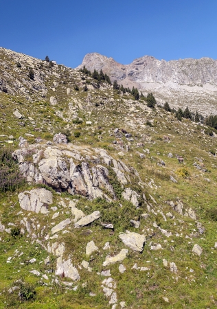 hight: Eriste valley, where you see some trees, surrounded by hight mountains on a clear day. It is located in the Spanish Pyrenees in Huesca. It�s a vertical picture