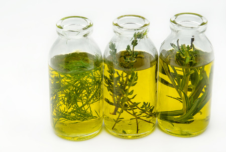 extra virgin olive oil: Extra virgin olive oil surrounded by freshly harvested olives Stock Photo