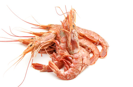 Various grilled shrimp surrounded by white background photo