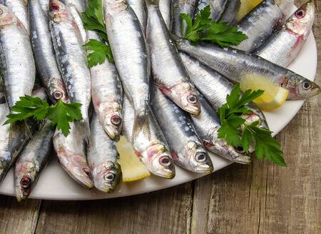 Fresh sardines with parsley and lemon slices photo