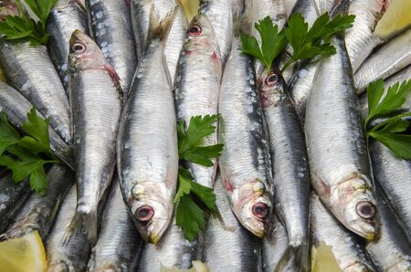 Fresh sardines with parsley and lemon slices photo