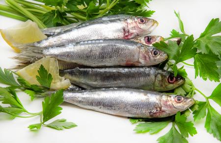 sardinas: Sardinas frescas con perejil y rodajas de lim�n