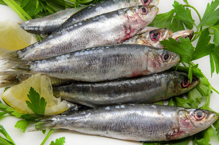 Fresh sardines with parsley and lemon slices Фото со стока