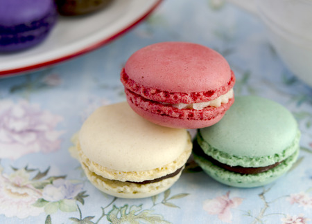macarons: Parisian Macarons tradcional biscuit filled with cream