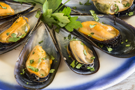 Mussels in the shell. Banco de Imagens