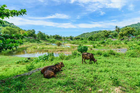 keereewong village9