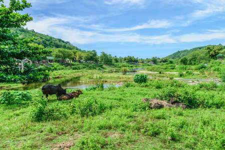keereewong village10