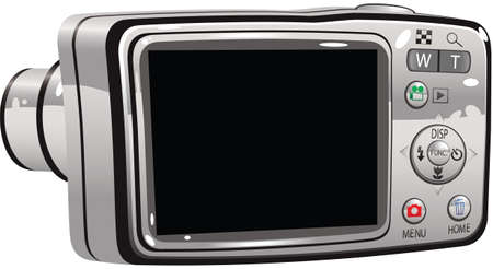 lcd display: An illustration of the viewfinder on a modern digital camera. Viewfinder is blank for your own message.