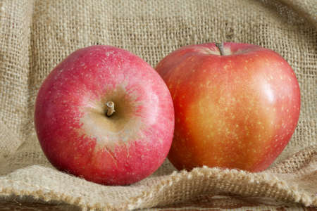 two beautiful red apple on canvas bag Stock Photo - 11221766