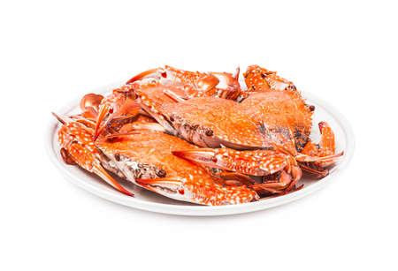 mariscos: plato de cangrejo al vapor los mariscos aislado en fondo blanco