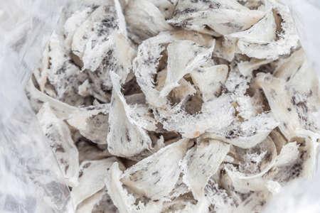 swallow bird: Swallow bird nest, Chinese luxury food in plastic bag