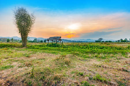 beautiful sunset at countryside agriculture dry field with the hut in harvest season of thailand Stock Photo