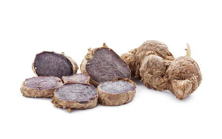 black galingale root, thai herb and folk medicine isolated on white background