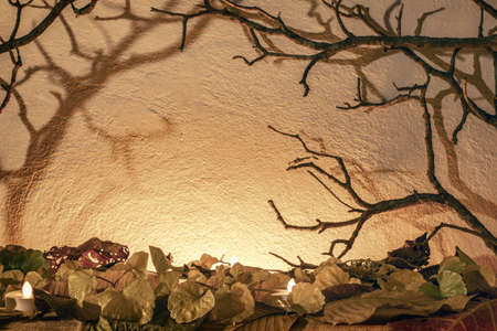 Spooky horror background with dry branch and leaf in warm tone color for halloween night concept decorated