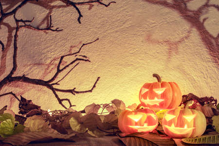 Halloween pumpkin head or Jack O' Lanterns glowing in the spooky background with dead tree branch Stock Photo