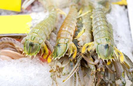 fresh mantis shrimp or oratosquilla freeze with ice the expensive luxury seafood on yaowarat market street of thailand