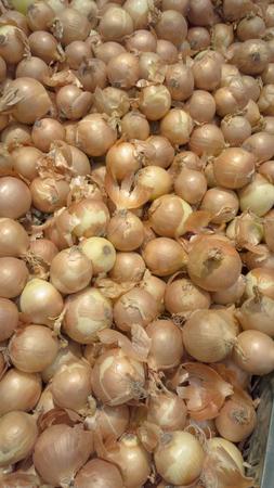 Fresh onion at market place Reklamní fotografie