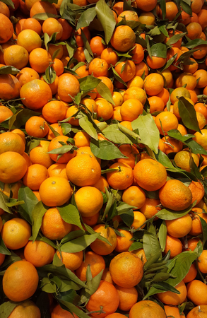 Lot of tangerines Stock Photo