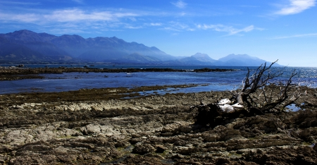 Kaikoura NZ photo