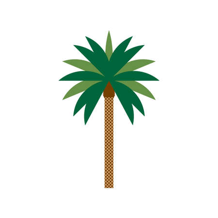 Palm dates flat color illustration