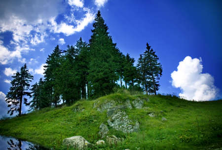 Top of mountain with lake, green trees and blue sky Stock Photo - 3562329