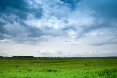 Landscape view of dramatic blue sky and green grass Stock Photo - 3789089