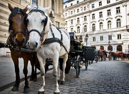 hofburg: Horse-transport � moteur palais Hofburg, � Vienne, Autriche Banque d'images