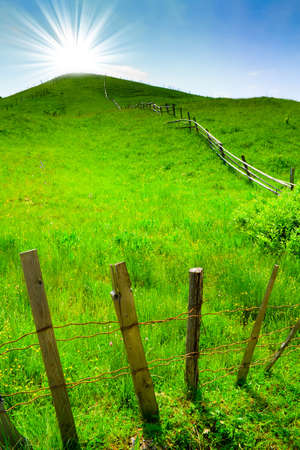 Green rural hill and sun over blue sky photo