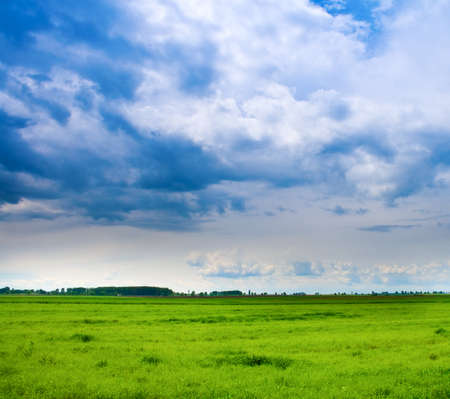 Vibrant background of cloudy sky and fresh green grass Stock Photo - 4370607