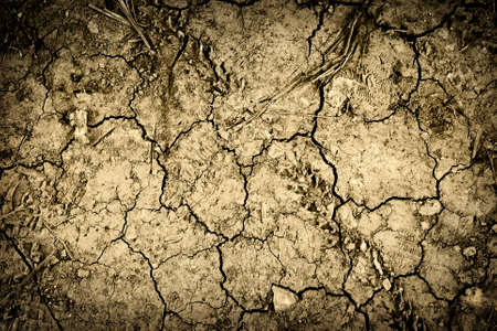 dirt on ground: Textured background of cracked dry brown earth Stock Photo