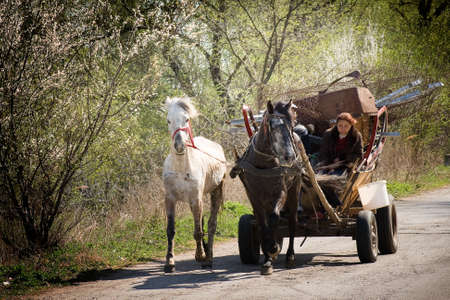 gypsy woman: Gypsy carriage on some road in Romania