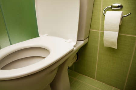 Toilet seat and paper in nice clean bathroom photo