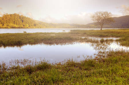 Peaceful lake landscape on Sao Miguel Island, Azores Stock Photo - 13441831