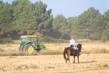 Two diferents ways of transport, Horse vs Tractor Stock Photo - 14948889