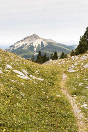 A path leading to a mountain in Zurizas Valley, Spanish Pirineos