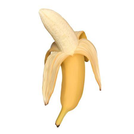 Realistic open banana isolated on white background. Half peeled banana, vector illustration