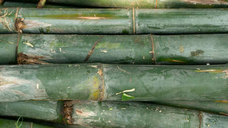 Piles of bamboo, one of handicraft materials and materials to build traditional houses