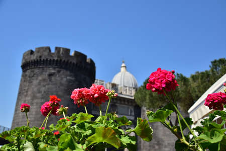 The revival of centuries-old walls, the motives of Italy, a sunny day, paint spring, strength and fragility.