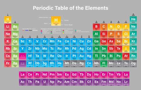 Periodiek systeem van de elementen Vectorillustratie - toont atoomnummer, symbool, naam, atoomgewicht, staat van materie en elementcategorie - inclusief de vier nieuwe elementen Nihonium, Moscovium, Tennessine en Oganesson