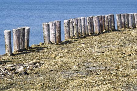 Wooden poles on the beach in Zeeland, Holland