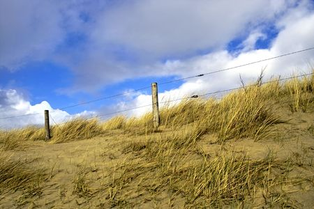 fenced: Fenced off sand dune on the coast of Holland Stock Photo