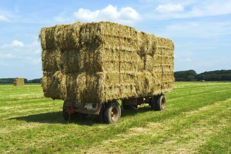 Bales of hay on a trailer standing in a grass field photo