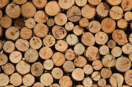 Background of dry Firewood Logs stacked up on top of each other Standard-Bild
