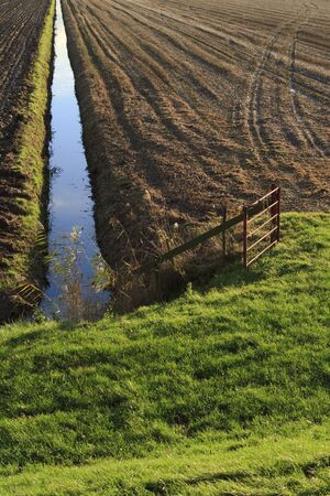 An Autumn agricultural scene in the Netherlands Stock Photo - 8487534
