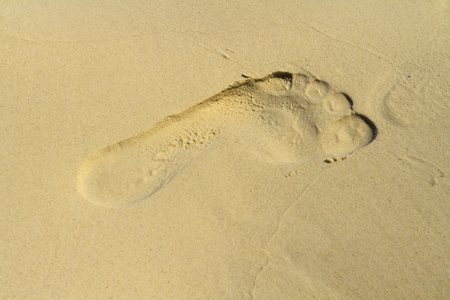 Left footprint on a sandy beach photo