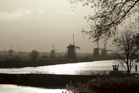 Kinderdijk windmills  in early morning sunlight, misty and moody